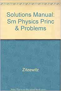 physics principles and problems solutions manual